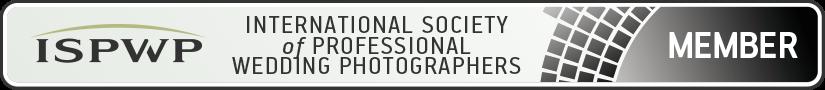 Matteo Michelino: Fotografo Professionista ISPWP. Badge del Contest Wedding Photography 2017
