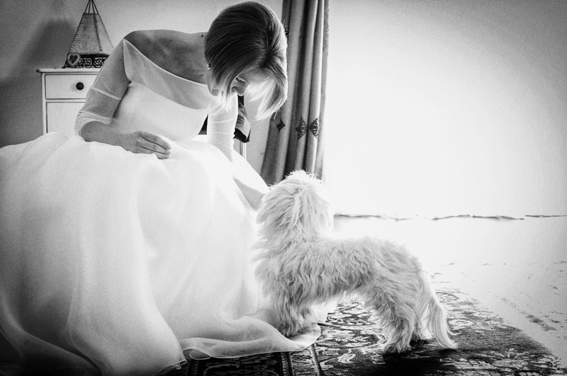 Servizio fotografico di matrimonio in stile reportage. Sposa e cagnolino. Il Blog di Michelino Studio, Fotografo di matrimonio in Veneto.